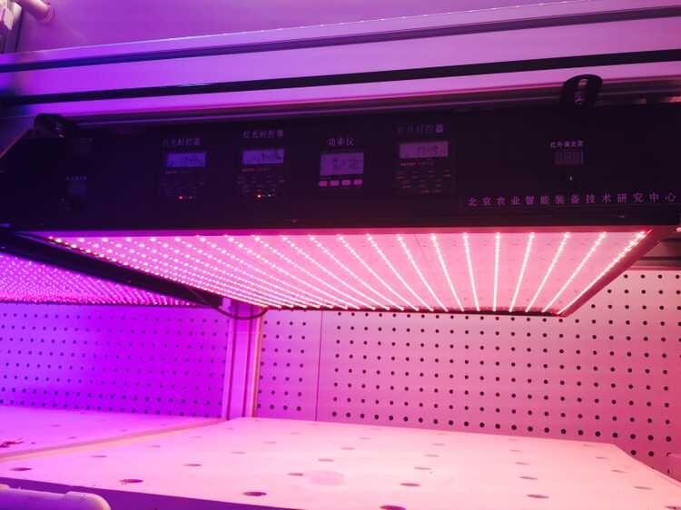 智能LED灯板(国家农业信息化研究中心) 照片