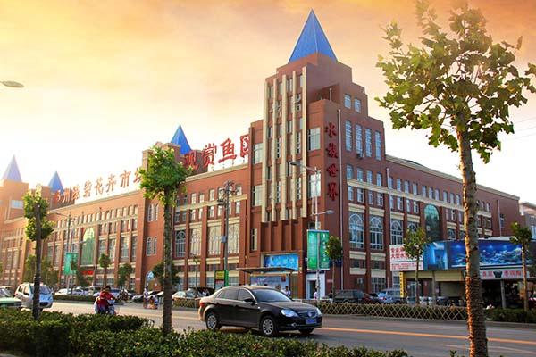 郑州陈砦花卉服务有限公司 照片