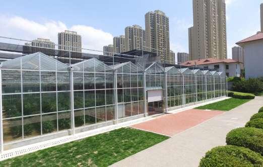 玻璃温室 照片