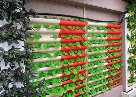 叠槽式墙体栽培设施(绿东国创) 照片