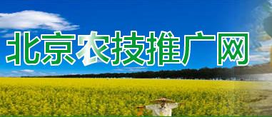 北京市农业技术推广站 照片