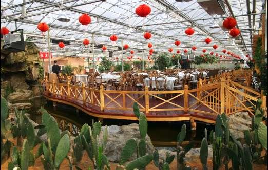 生态餐厅(上海都市绿色) 照片