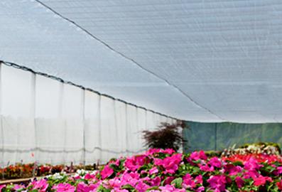 上海斯文森:HARMONY O E——全新散射型外遮阳产品 照片